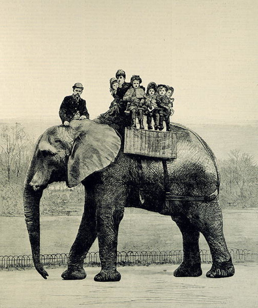 Detail of A Farewell Ride on Jumbo by English School