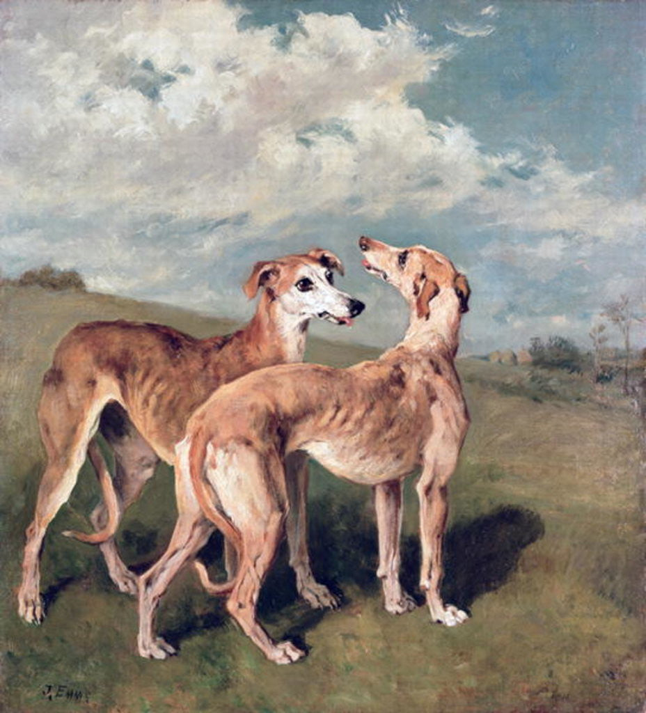 Detail of Greyhounds by John Emms