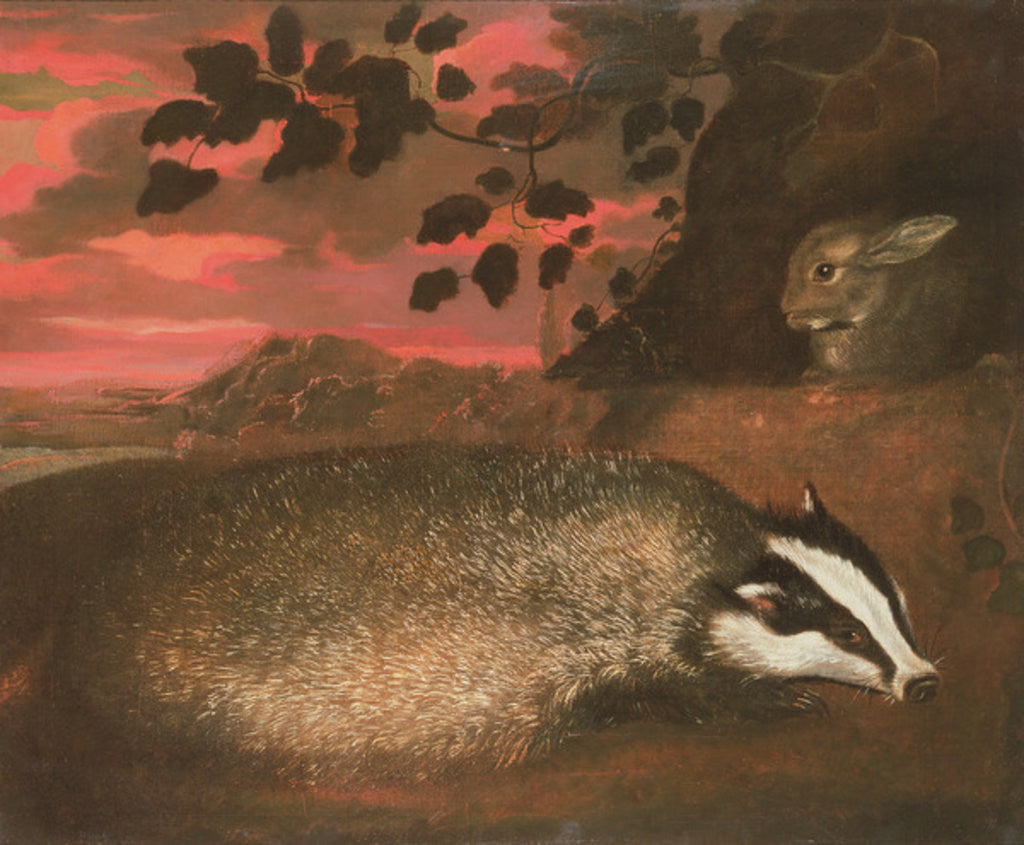 Detail of Badger, 17th century by Francis Barlow