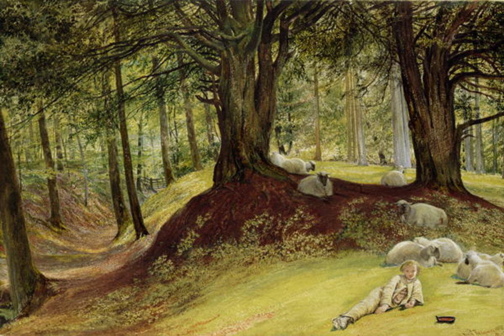 Detail of Parkhurst Woods, Abinger, Surrey by Richard Redgrave