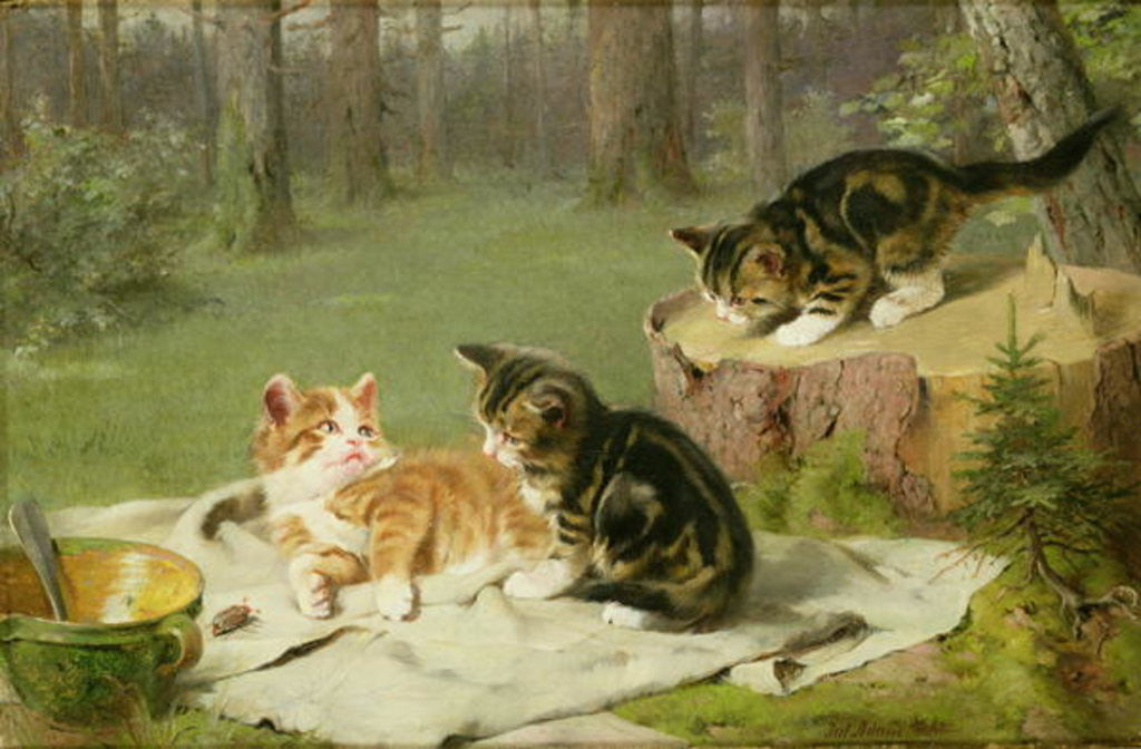 Detail of Kittens Playing by Ewald Honnef