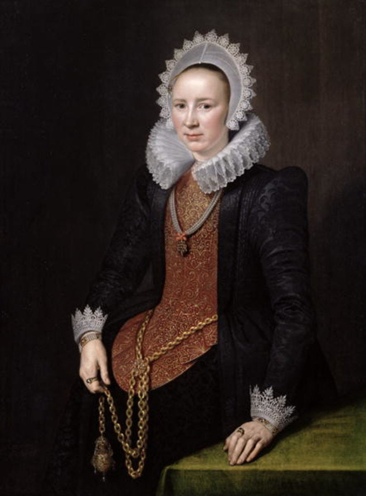 Portrait of a Lady aged 29