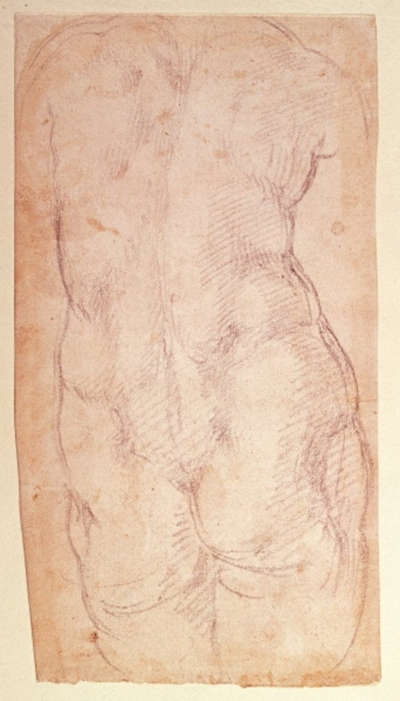 Detail of Study of the back of a nude figure by Michelangelo Buonarroti