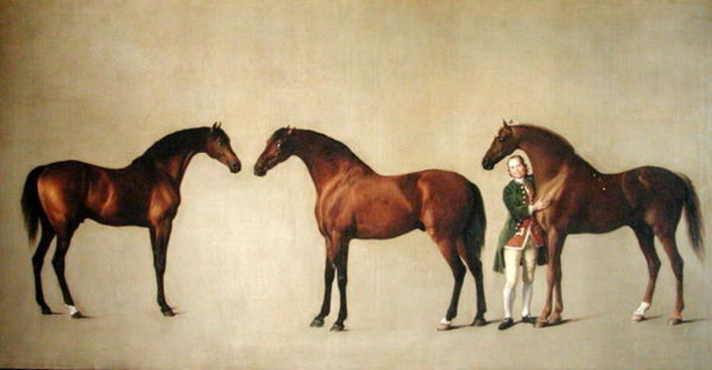 Detail of Whistlejacket and two other Stallions with Simon Cobb, the Groom, 1762 by George Stubbs