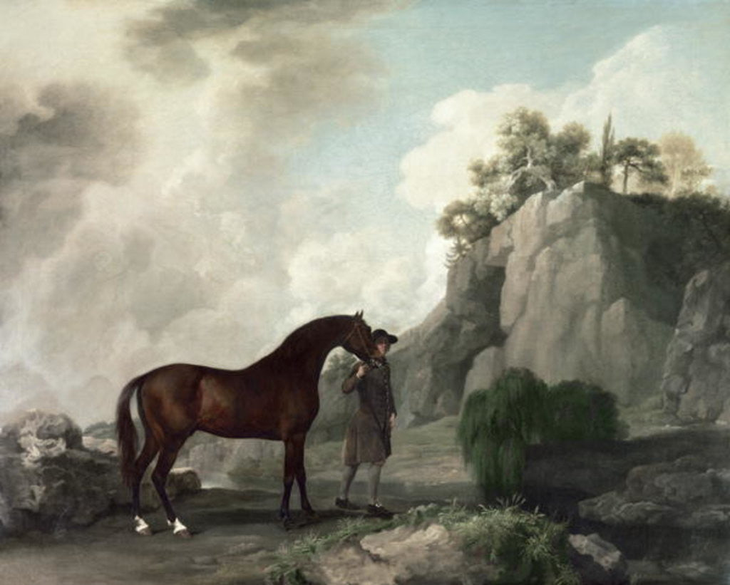 Detail of 'Cato' and Groom by George Stubbs