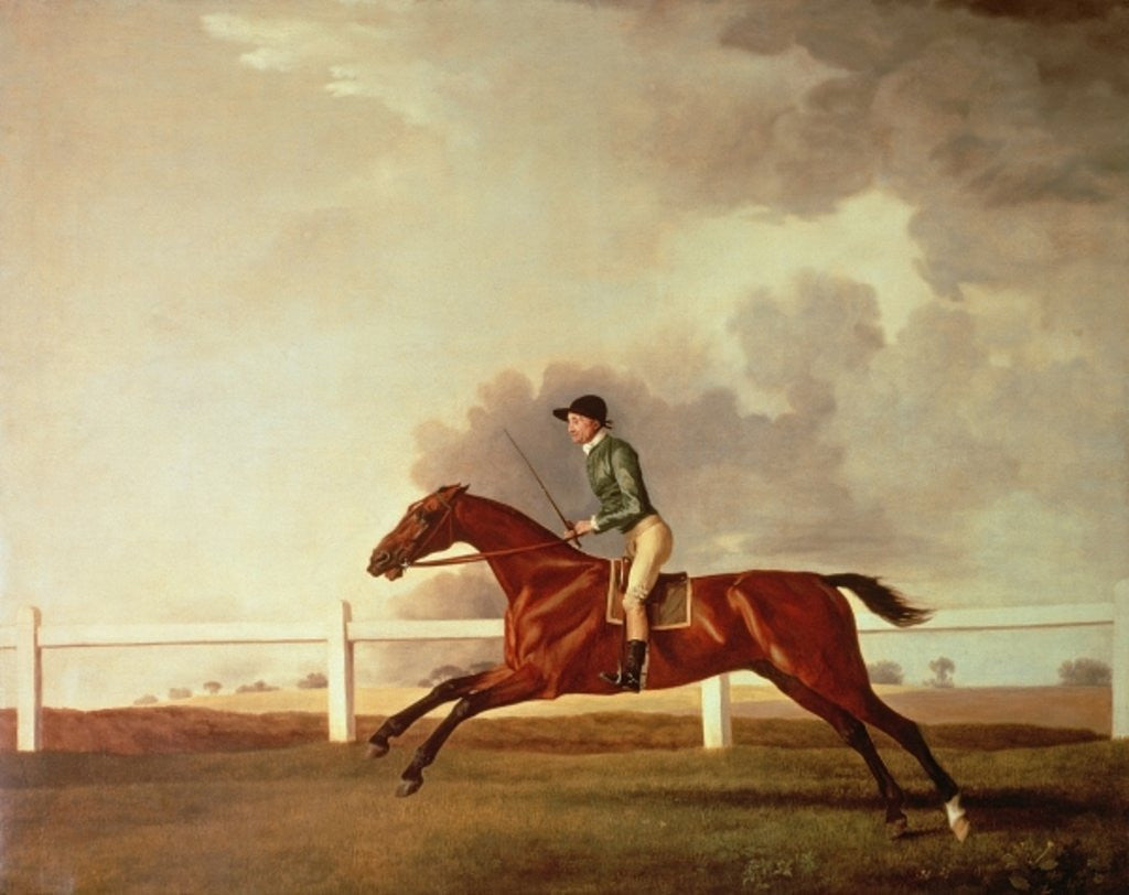 Detail of Bay Malton with John Singleton Up by George Stubbs