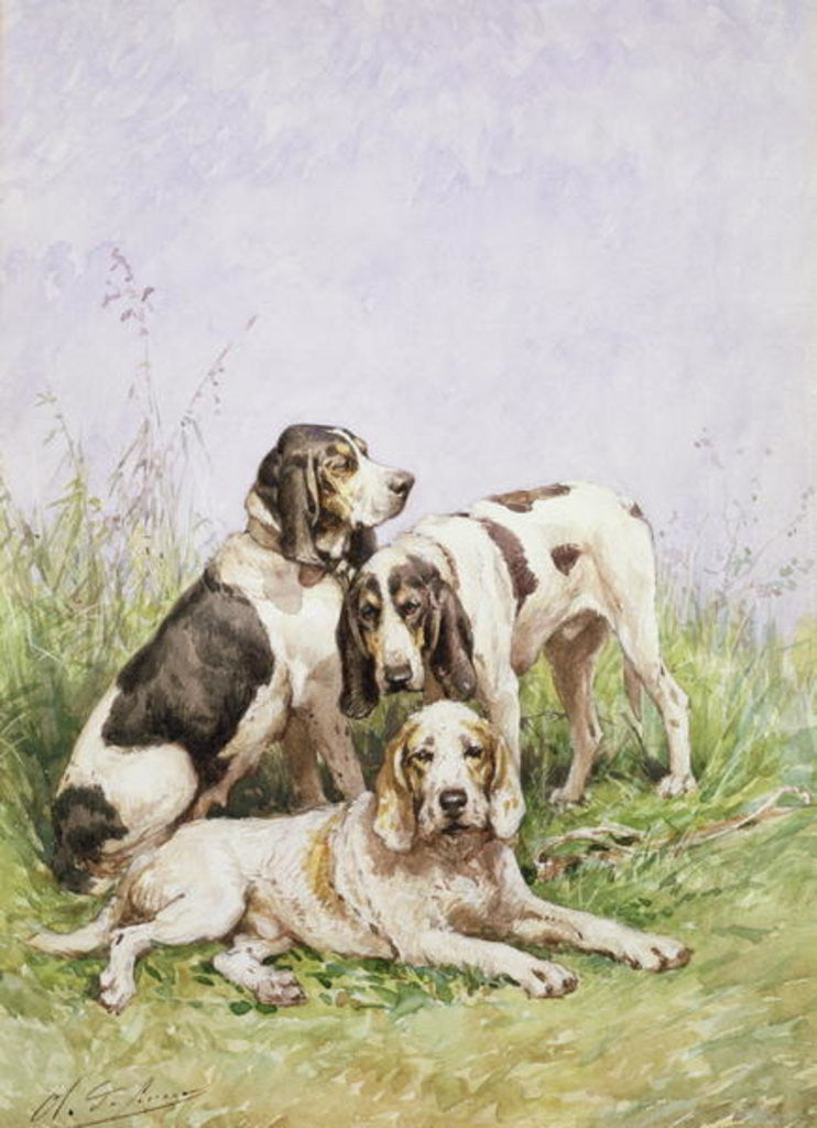 Detail of A Group of French Hounds by Charles Oliver de Penne