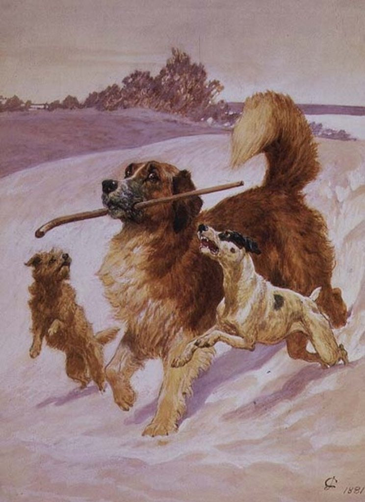 Detail of Three dogs playing in the snow by John Charlton