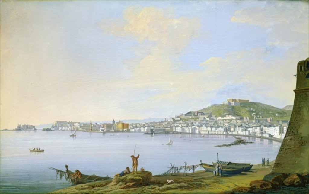 Detail of View of Naples by Saviero Xavier della Gatta