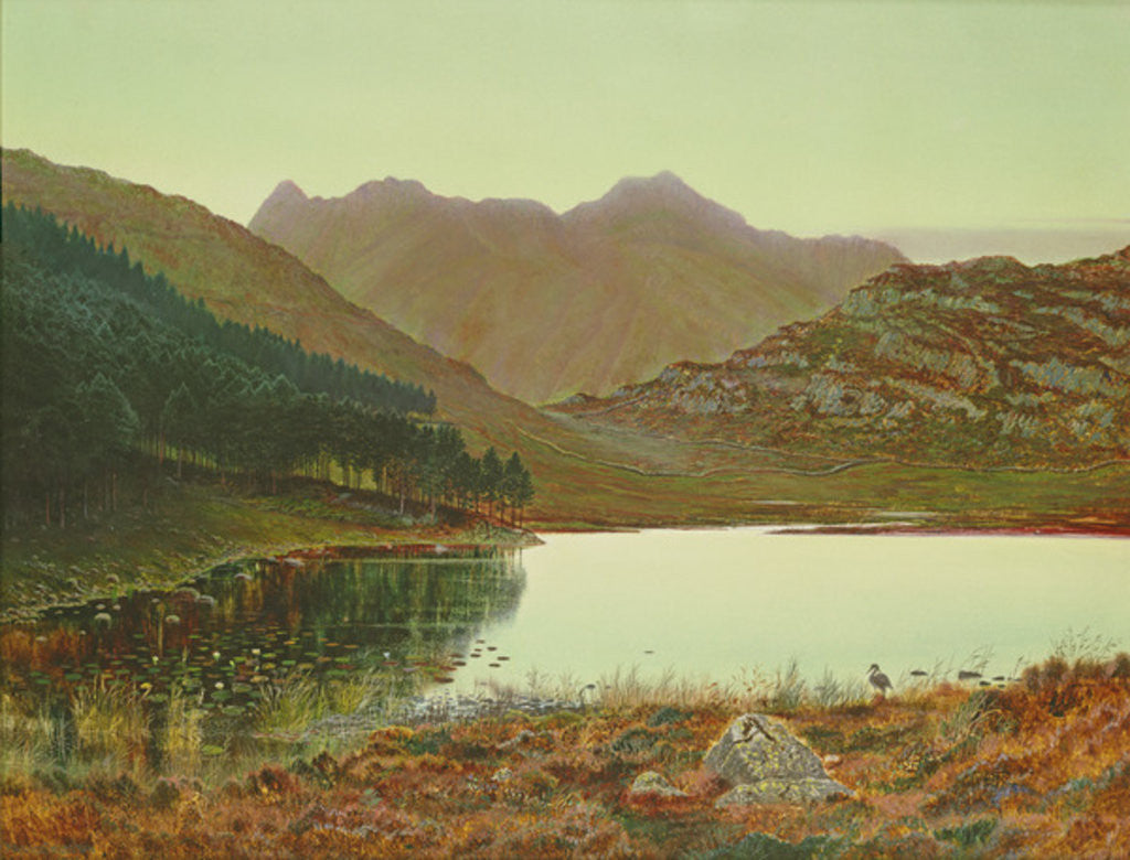 Detail of Blea Tarn by John Atkinson Grimshaw