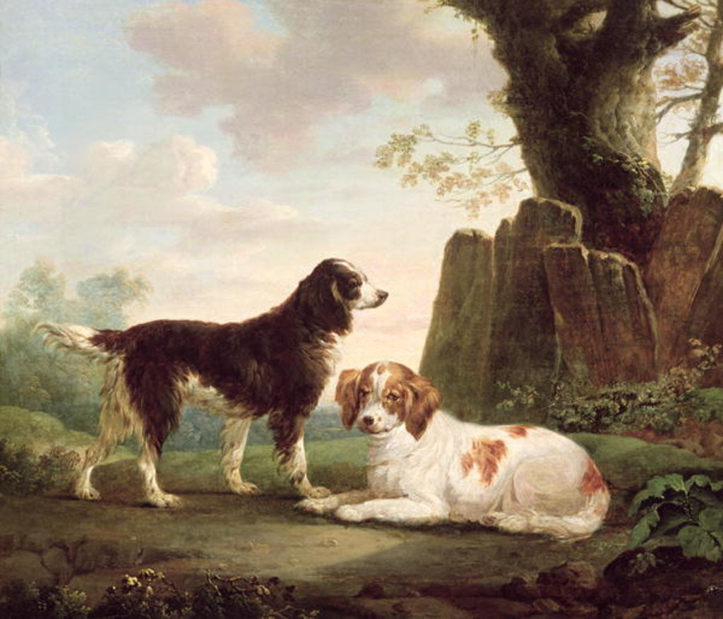 Detail of Two spaniels in a landscape by Charles Towne