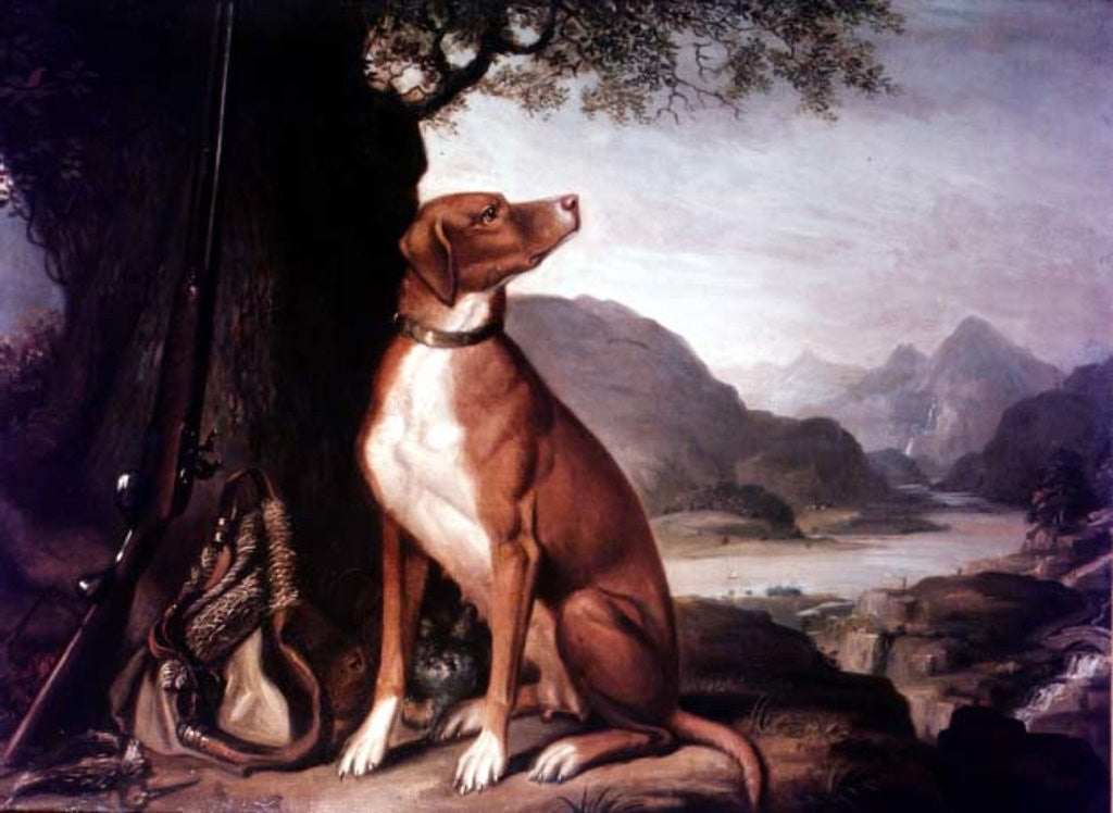 Detail of G. M. Johnston's favourite gun dog in a landscape by J. Francis Sartorius