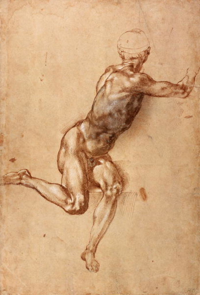 Detail of A seated male nude twisting around by Michelangelo Buonarroti