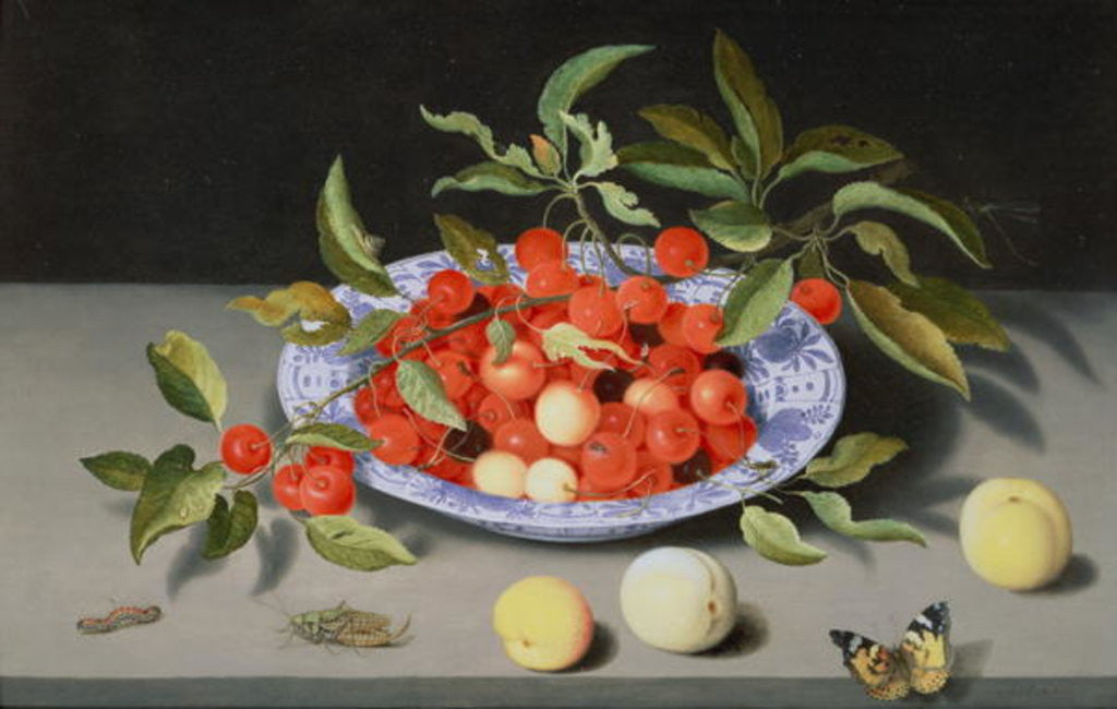 Detail of Still Life of Cherries and Peaches by Balthasar van der Ast