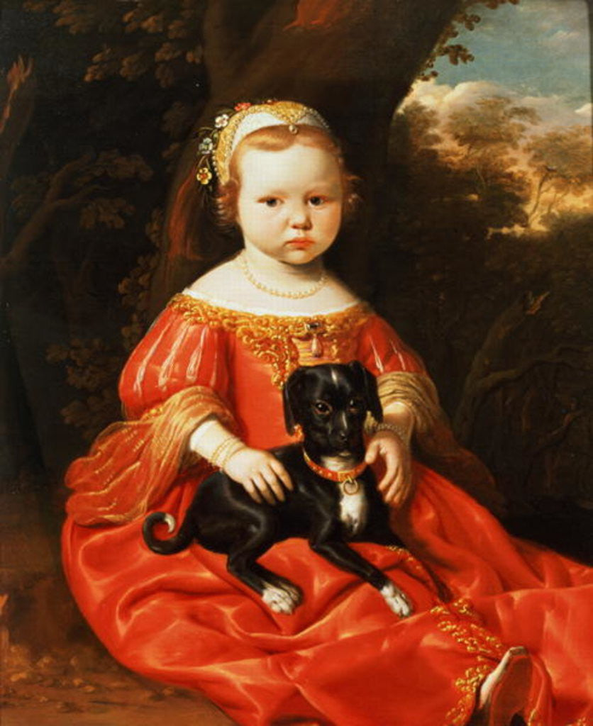 Detail of Portrait of a Girl with a Dog by Jacob Gerritsz Cuyp