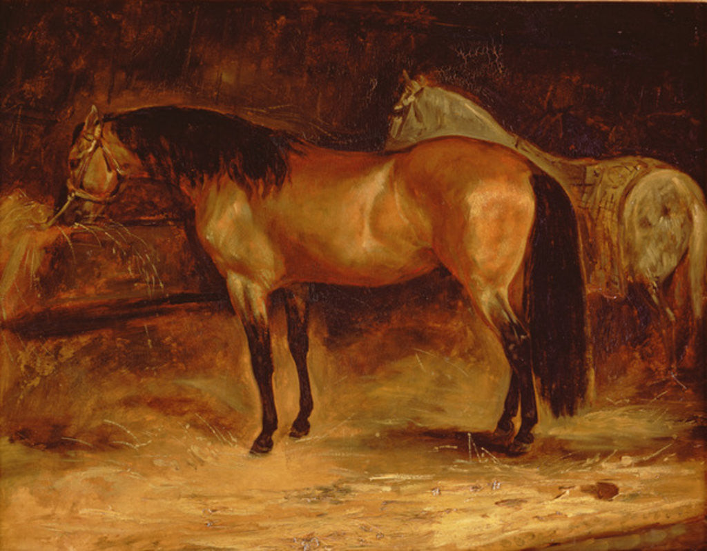 A Bay Horse at a manger, with a grey horse in a rug