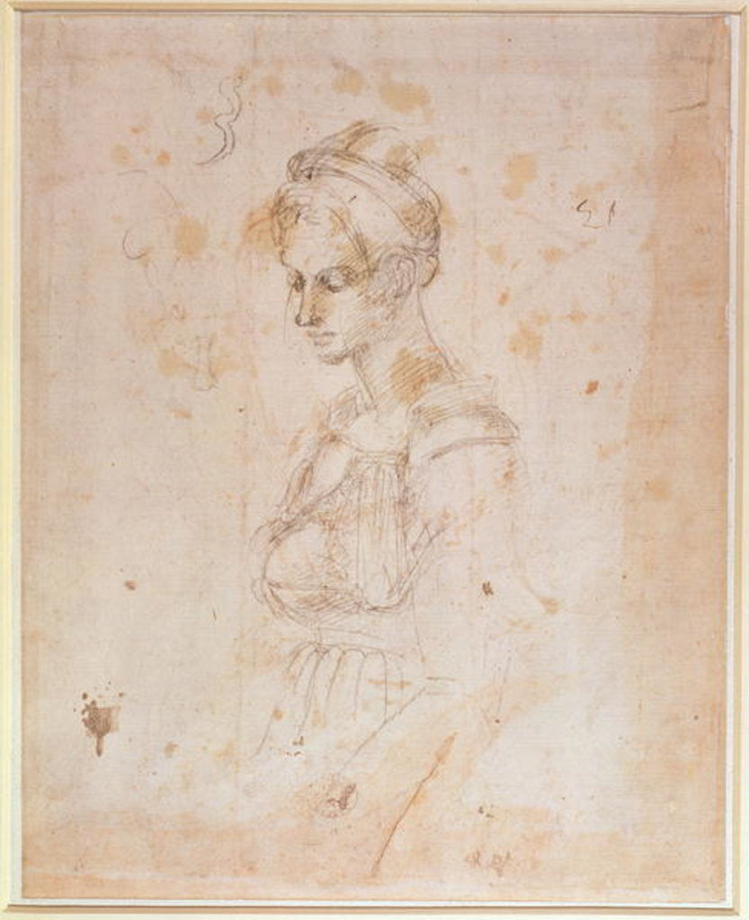 Detail of W.41 Sketch of a woman by Michelangelo Buonarroti