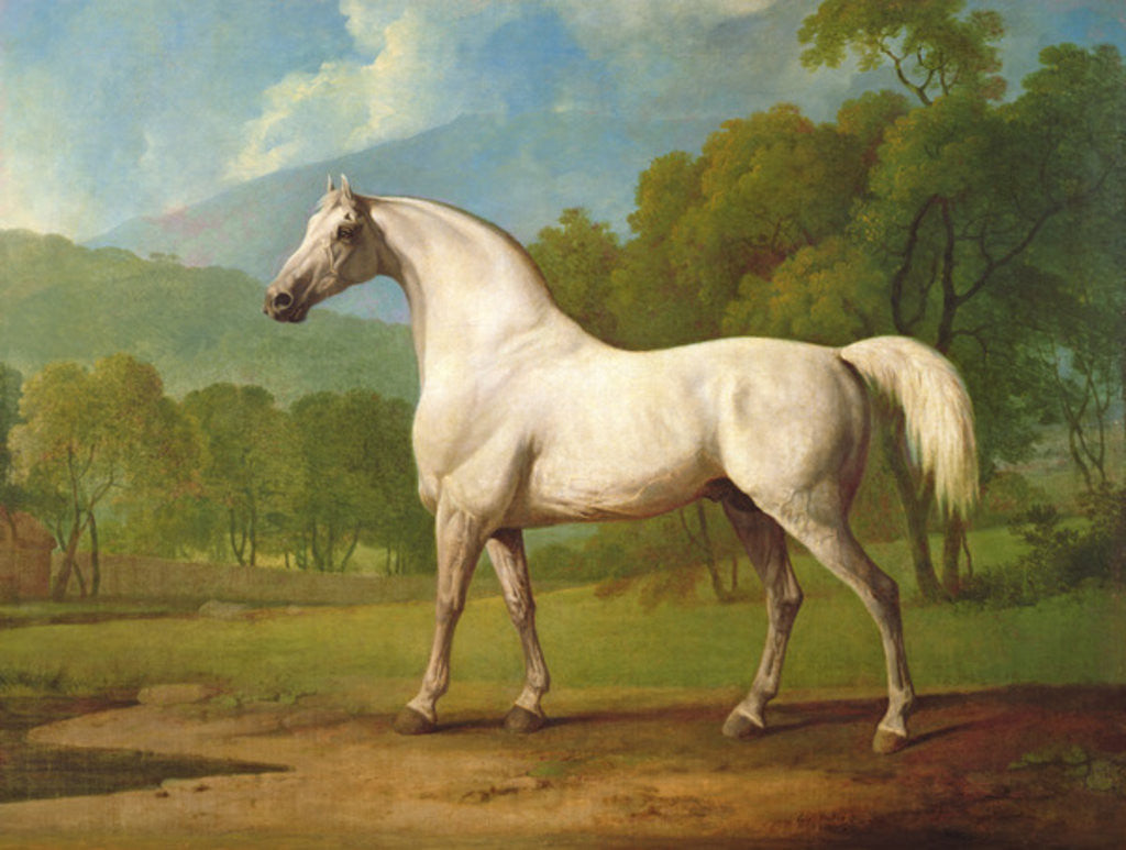 Detail of Mambrino by George Stubbs