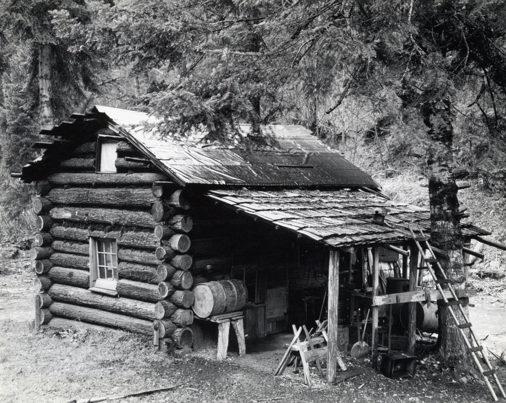 Detail of Log Cabin In Canyon Creek, Oregon by Corbis