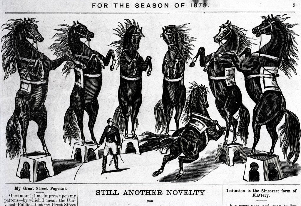 Detail of Horses Performing In Circus by Corbis