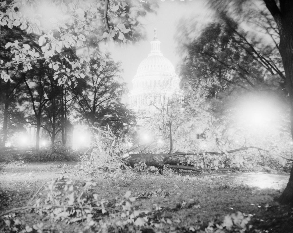 Detail of Capitol Building and Lawn After Hurricane by Corbis
