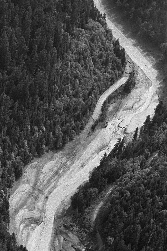 Detail of Aerial Flood Of Road Surrounded By Trees by Corbis