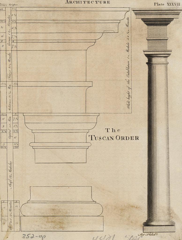 Detail of Illustration Tuscan Order of Columns by Corbis