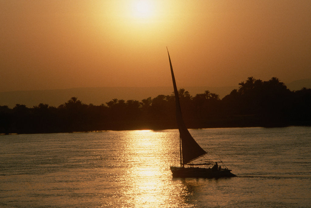 Detail of Felucca Sailing at Sunset by Corbis