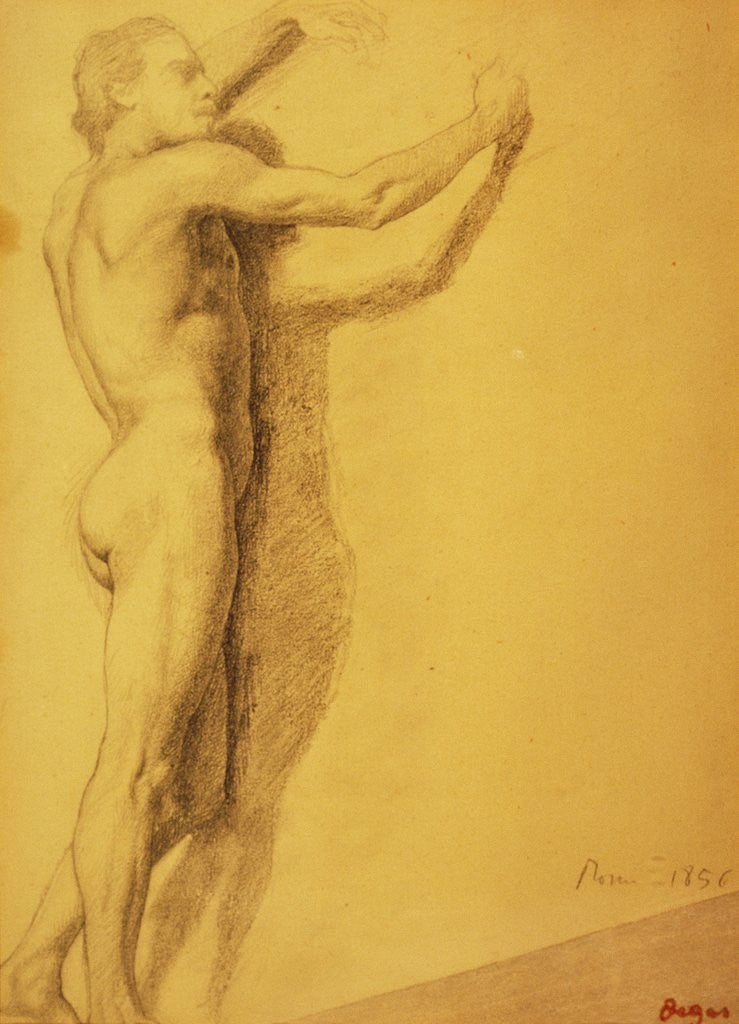 Study of a Male Nude by Edgar Degas