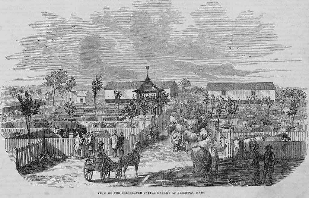 Detail of Cattle Market at Brighton by Corbis
