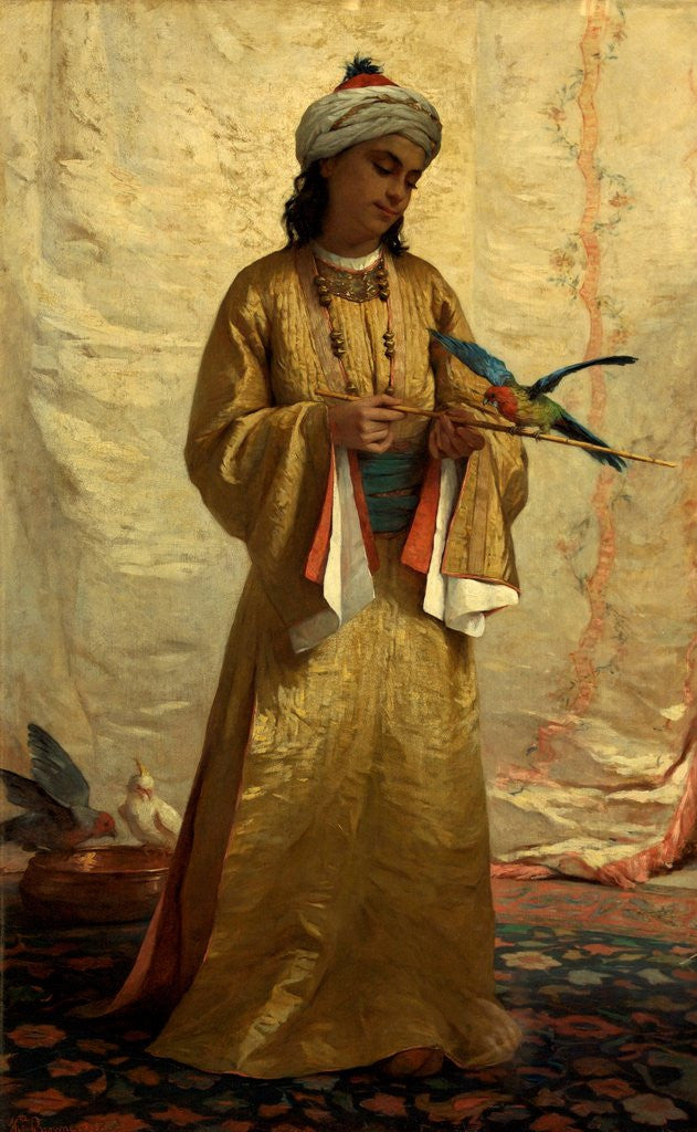 Detail of A Moorish Girl with Parakeet by Henrietta Brown
