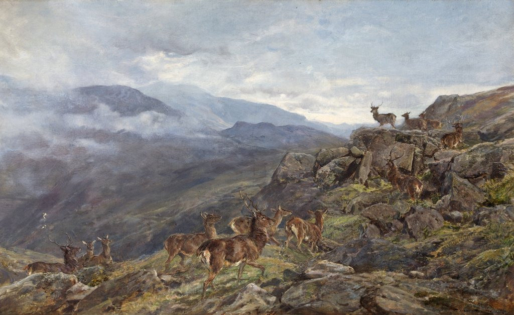 Detail of Deer in Mountains by Heywood Hardy