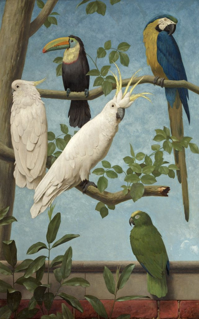 Detail of Cockatoos, Toucan, Macaw and Parrots by Henry Stacey Marks