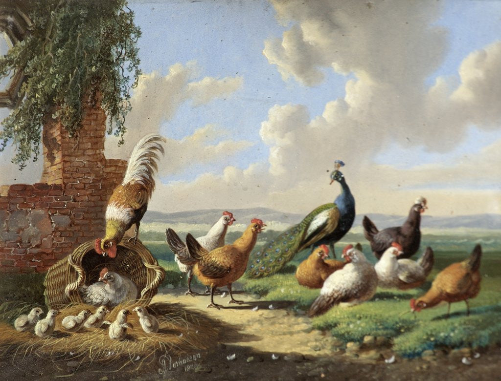 Detail of Fowl in a Landscape by Albertus Verhoesen