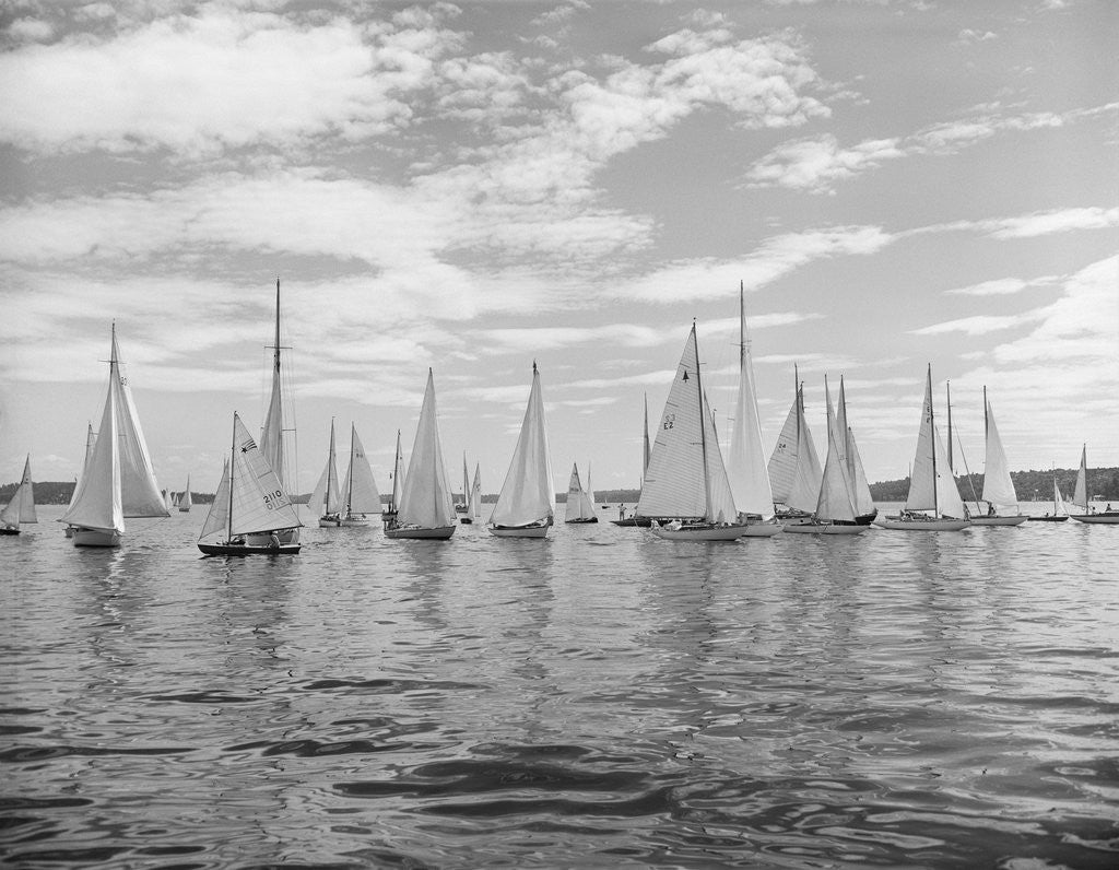 Detail of Boats Lined Up for a Race on Lake Washington by Corbis