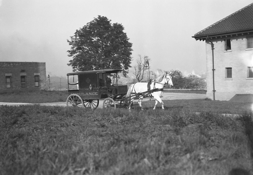 Detail of Horse-Drawn Ambulance by Corbis