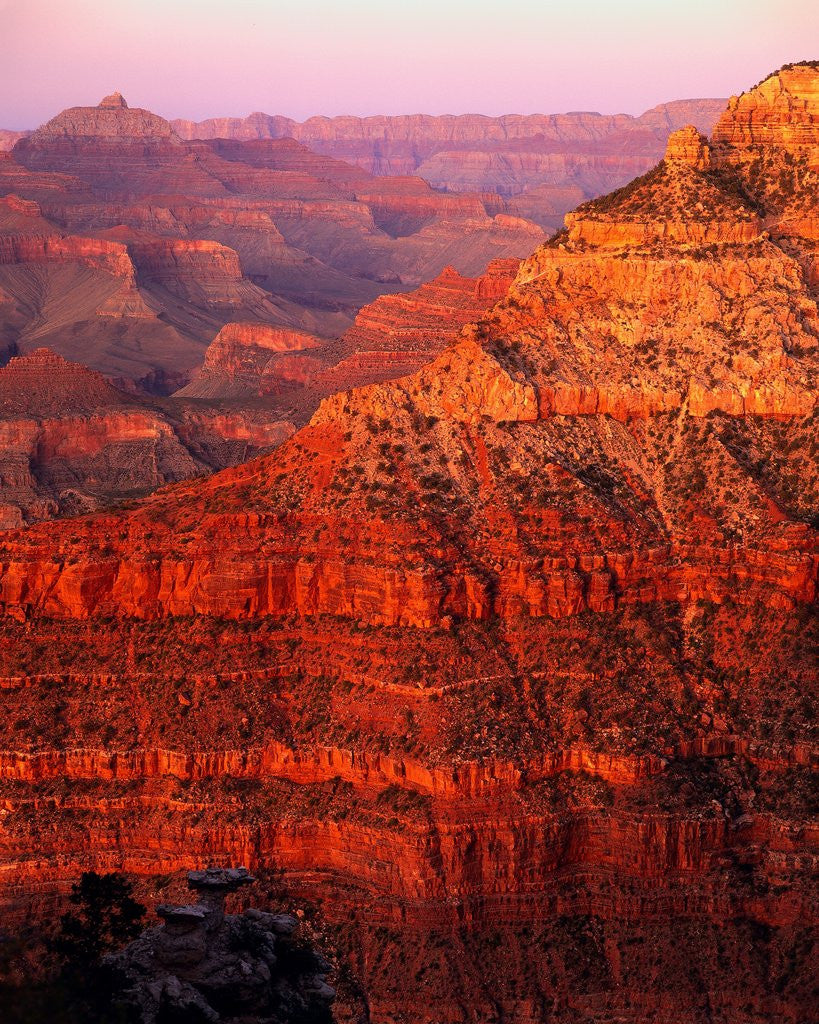 Detail of Grand Canyon by Corbis