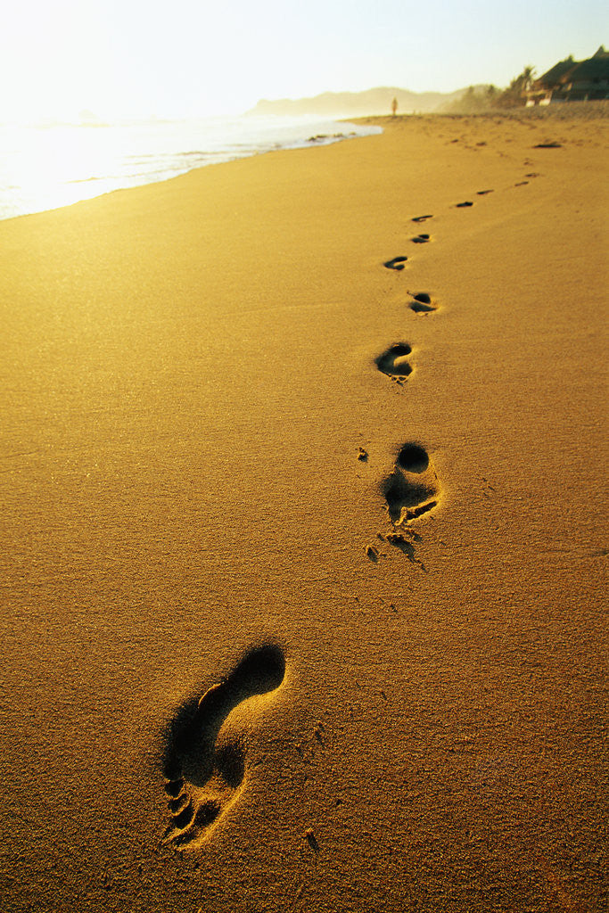 Detail of Footprints Along Beach by Corbis