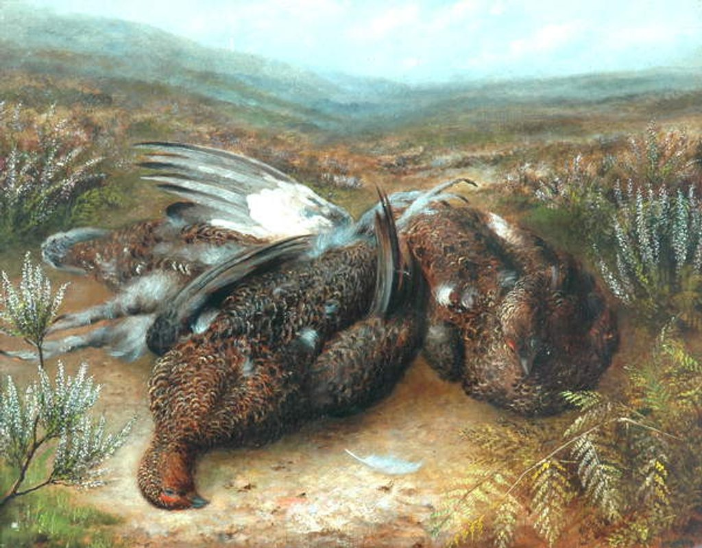 Detail of Dead Grouse in Landscape by Unknown Artist