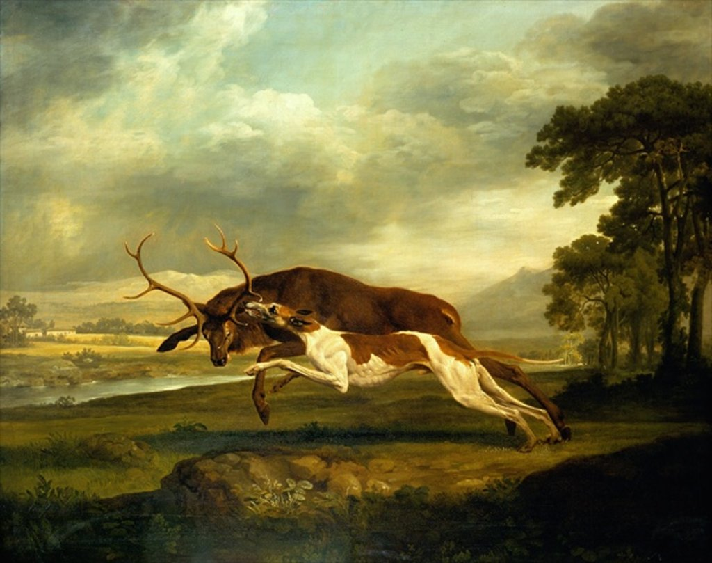 Detail of A Hound attacking a stag by George Stubbs