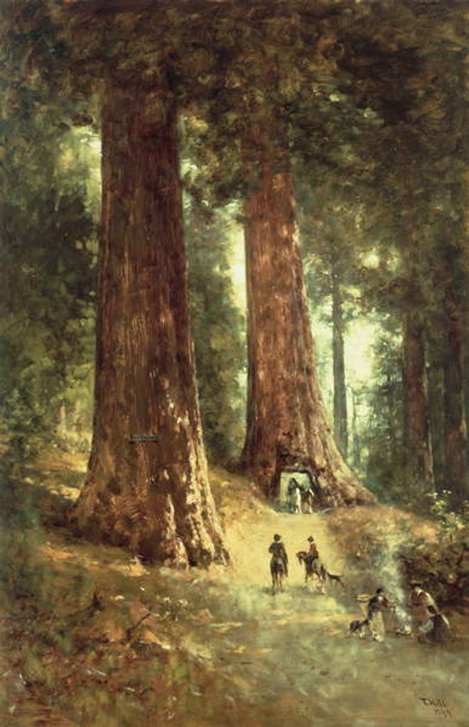 Detail of In the Redwoods, 1899 by Thomas Hill