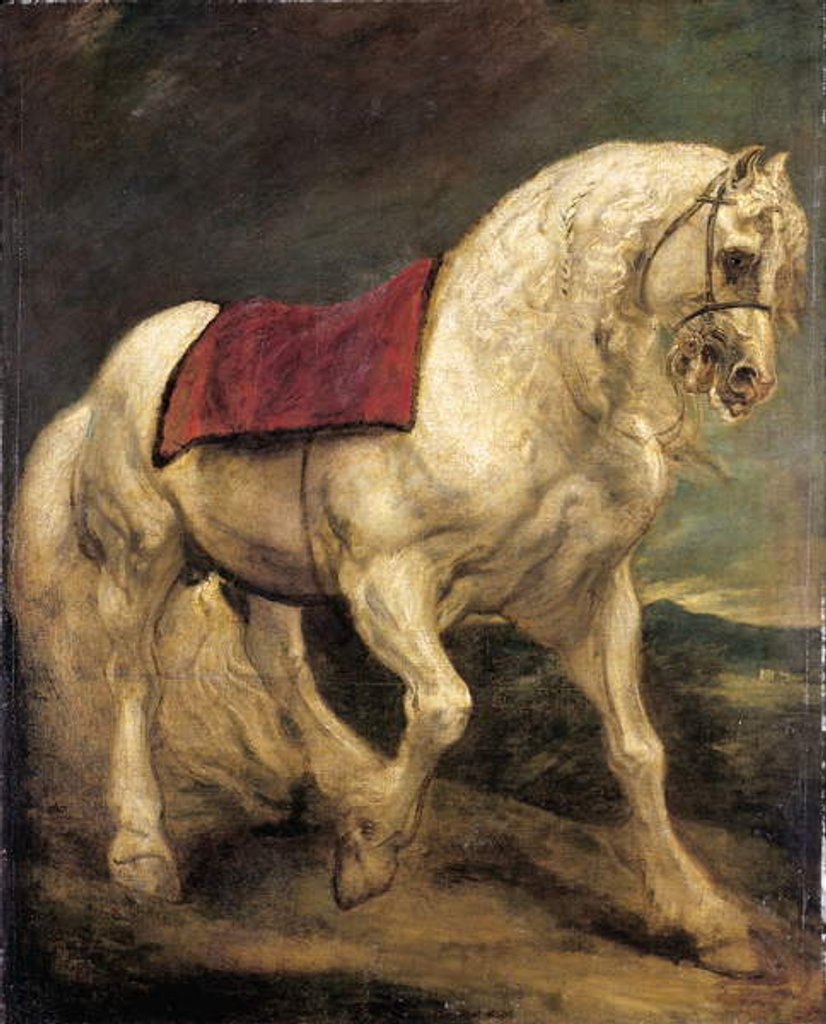 Detail of A bridled grey stallion, with a saddle cloth and partially plaited mane: a modello by Anthony van Dyck