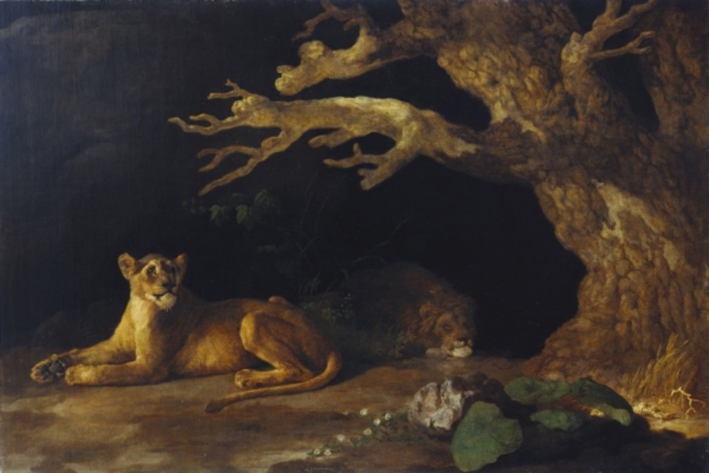 Detail of Lioness and Cave by George Stubbs