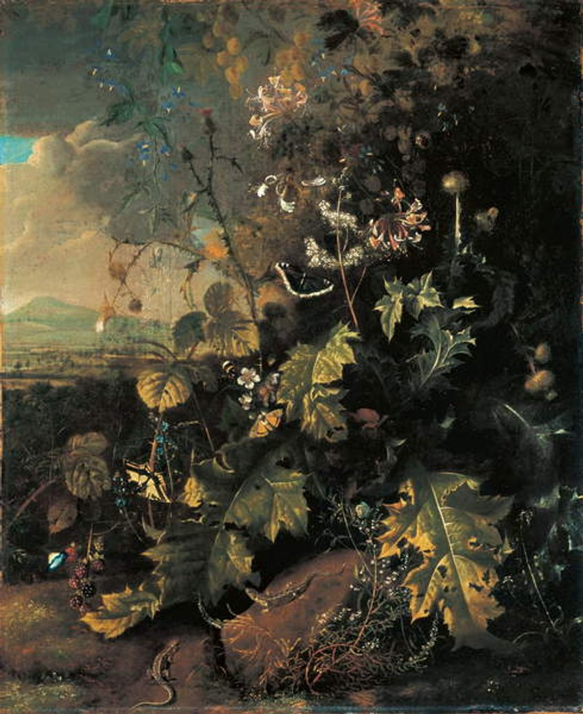 Detail of Forest floor with butterflies and lizards by Matthias Withoos