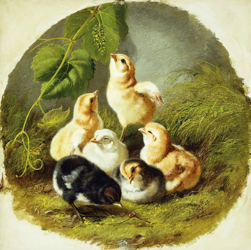 Detail of Chicks, 1863 by Arthur Fitzwilliam Tait