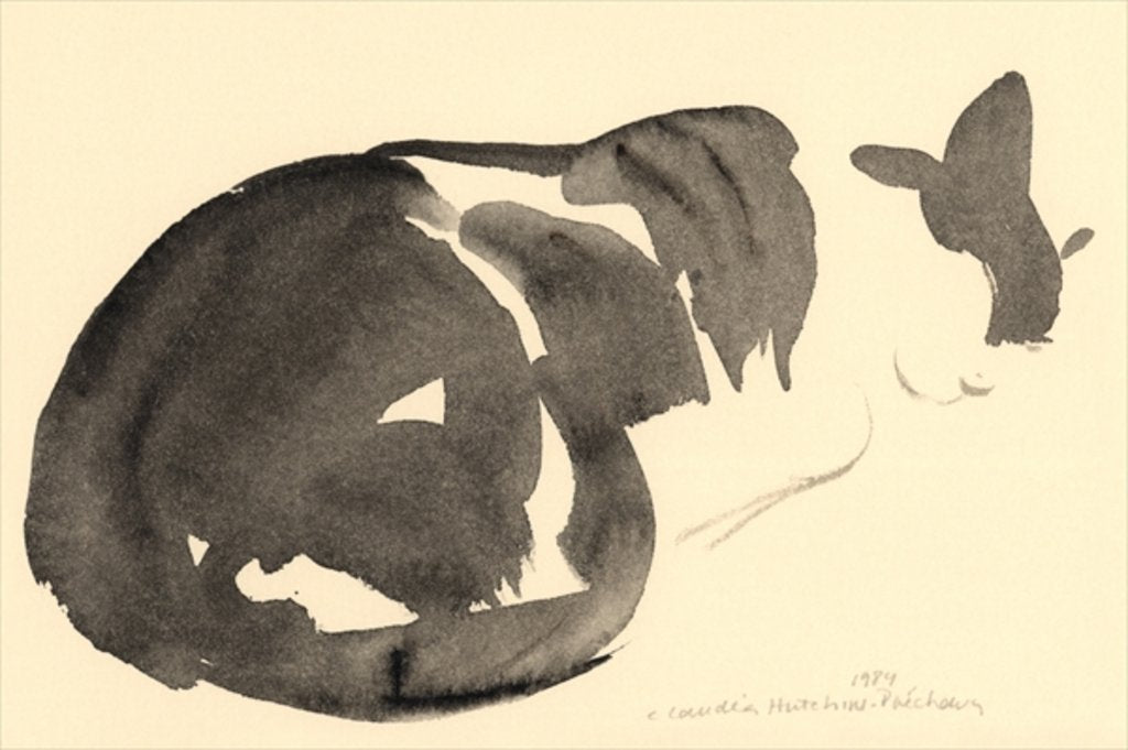 Detail of Sleeping cat, 1984 by Claudia Hutchins-Puechavy