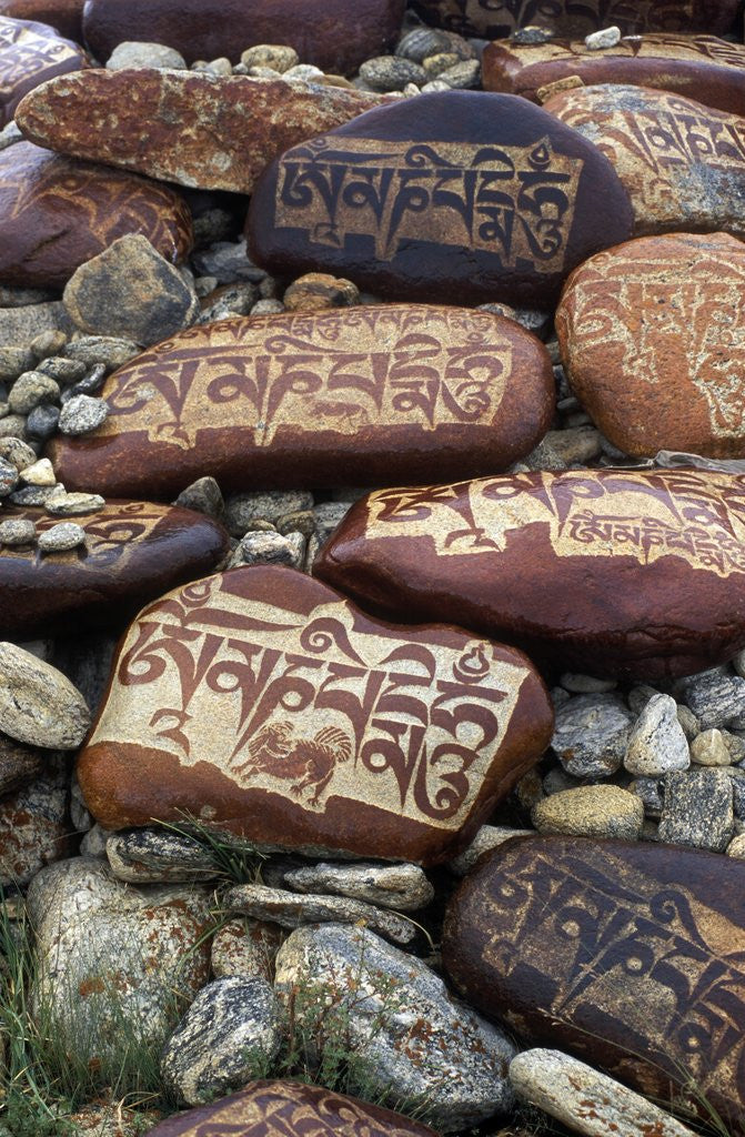 Detail of Buddhist Prayers on Carved Mani Stones in Tibet by Corbis