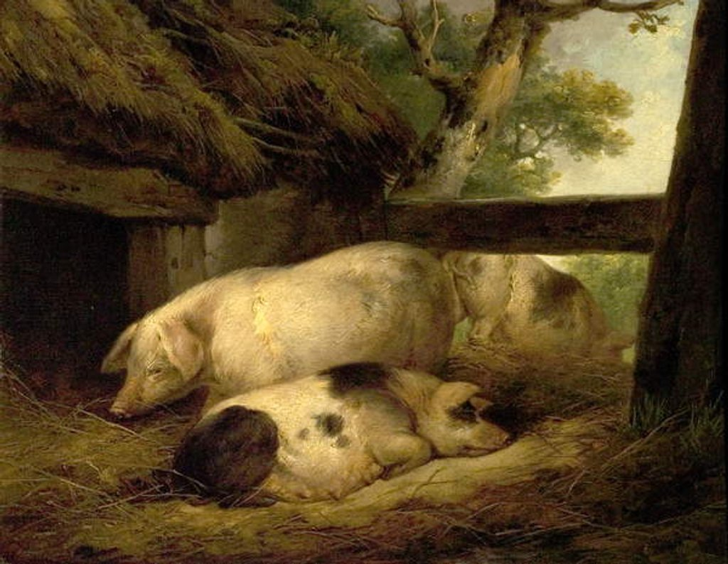 Detail of Study of Pigs by George Morland