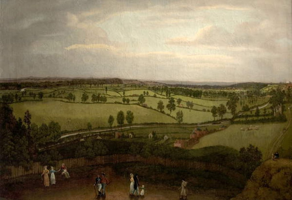Detail of Nottingham Meadows from the Rock Cliff, where Lenton Road turns into Park Valley by Richard Bonington