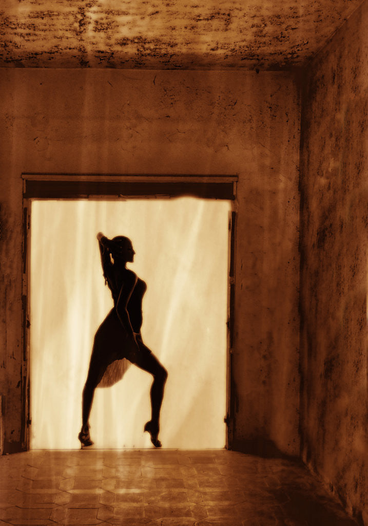 Detail of Dancer at the window II by Eugenia Kyriakopoulou